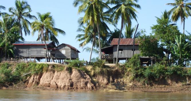 Local houses and palm trees, 4000 islands, Laos