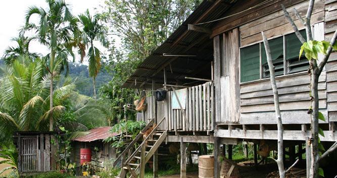 Traditional house, Sarawak, Borneo