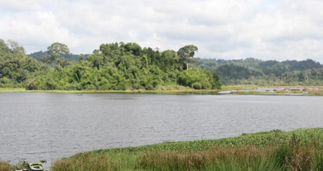 Crocodile lake, Cat Tien National Park, Vietnam