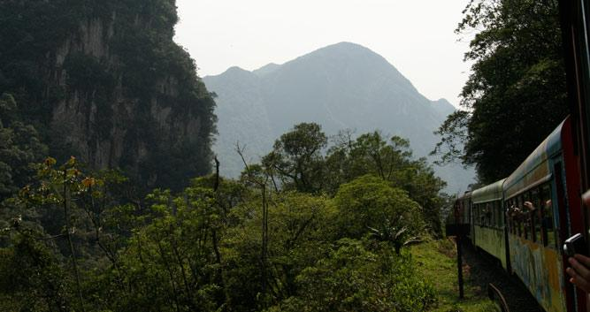 Travelling through Atlantic Rainforest, Serra Verde Express, Brazil