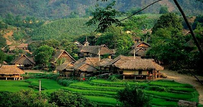 Rice terraces, countryside scenery, Mai Chau, Vietnam