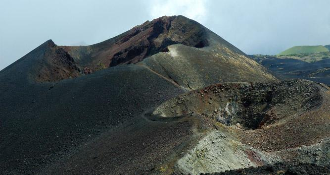 Mount Cameroon National Park