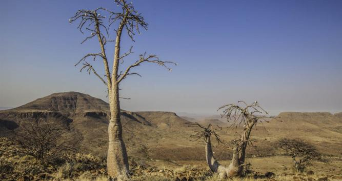 Damaraland_Landscape_Namibia