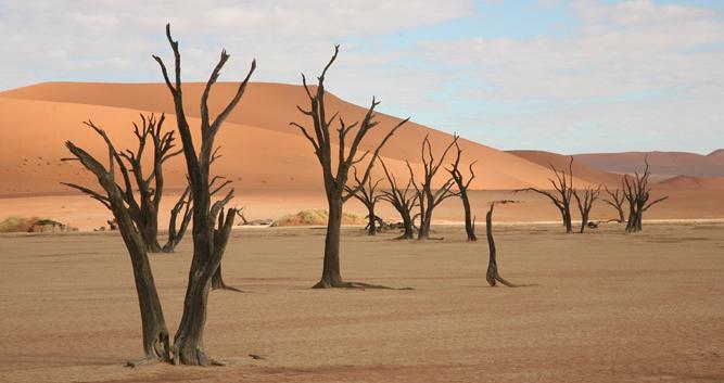 DeadVlei_Namibia