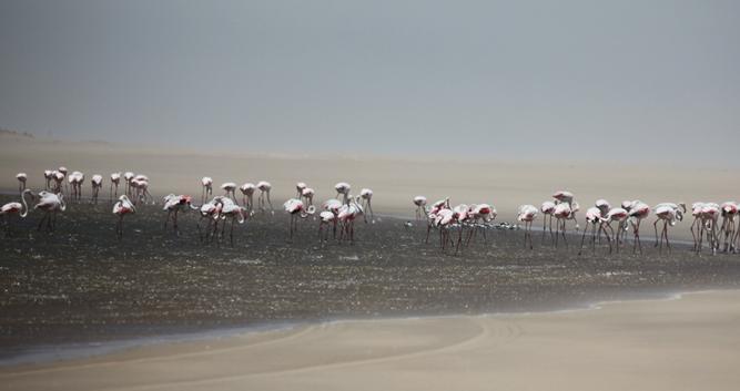 Swakopmund_Namibia