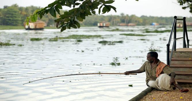 Local fishing in the backwaters, Kerala, India
