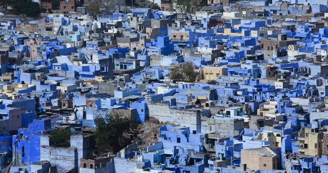 Blue houses in the city of Jodhpur, India