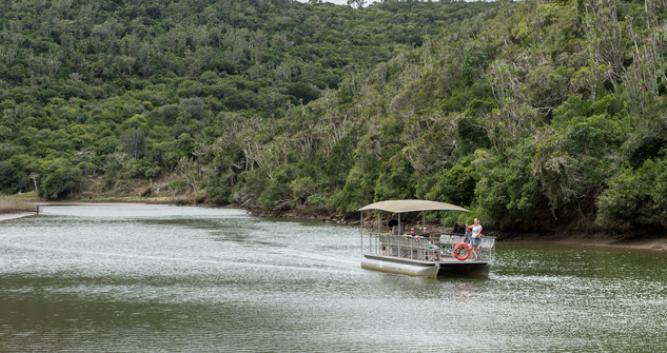 Copyright Kariega Game Reserve