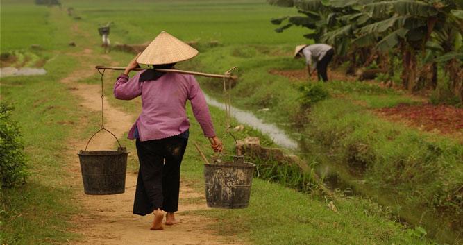 Farm workers, rural Vietnam