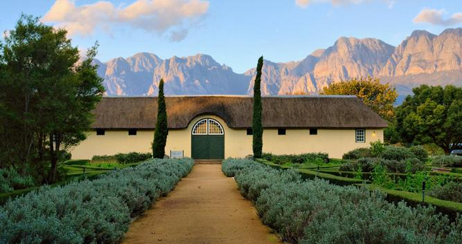 Winelands 3