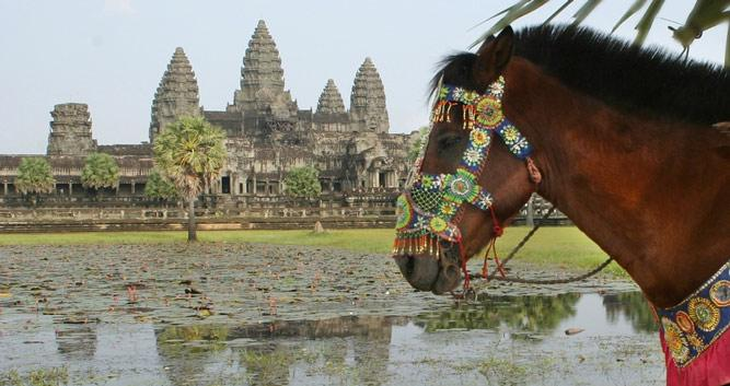 Horse and cart ride, Angkor Wat, Siem Reap, Cambodia