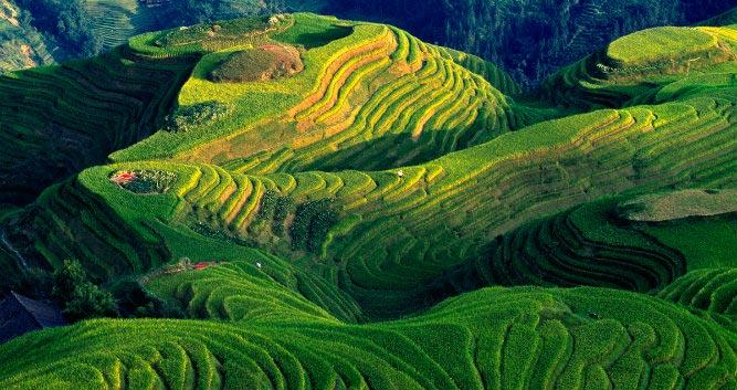 Longsheng Rice Terraces, near Guilin - Luxury China Travel