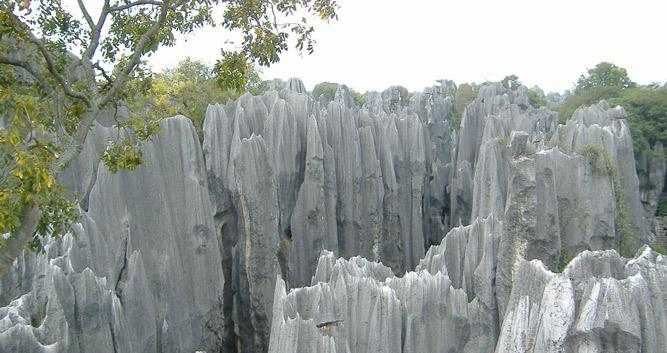Stone Forest, Kunming, Yunnan, China